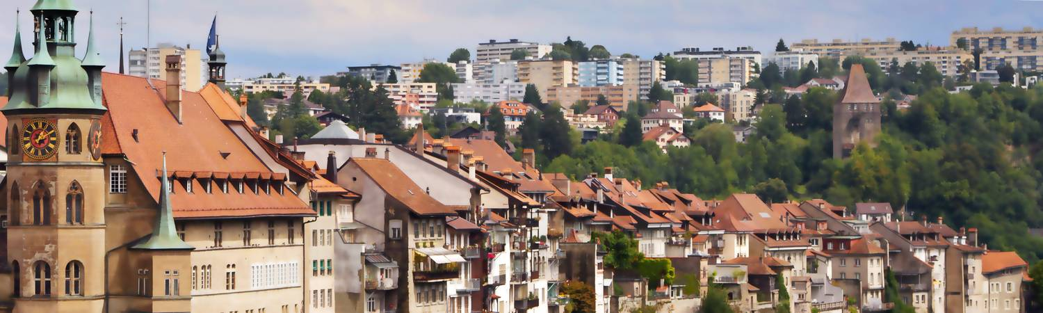 Immobilier fribourg